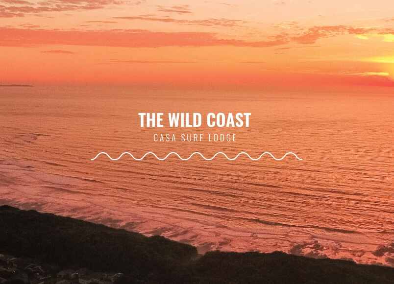Casa Surf Lodge - Wild Coast